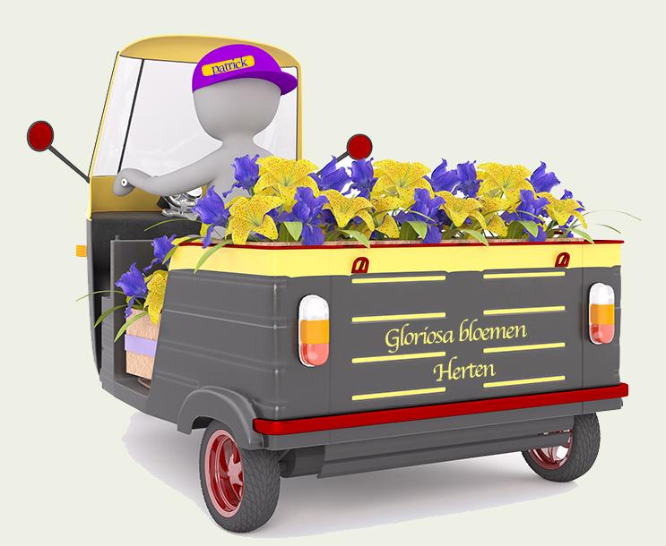 Gloriosa-bloemen-bezorg-informatie